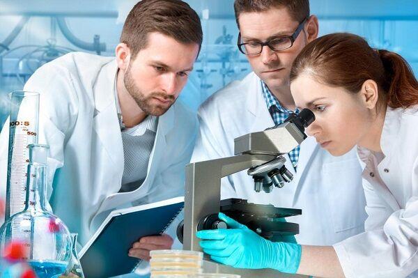Учеными разработан препарат, разлагающий нефтепродукты
