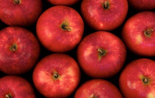 Роспотребнадзор посоветовал, как распознать плохие яблоки