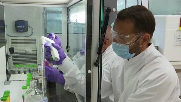 В США создана эффективная назальная вакцина от коронавируса