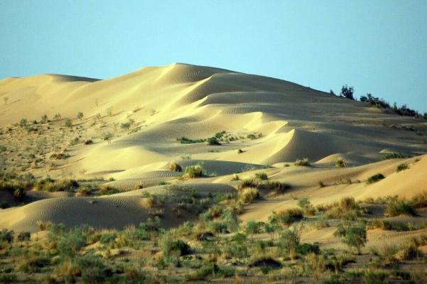 Сезон охоты в Туркменистане откладывается