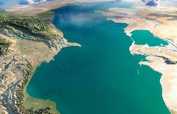 Институт Каспийского моря обсудил перспективы партнёрства с Международным институтом океана