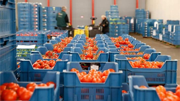 Россия запрещает импорт некоторых овощей и фруктов из четырех стран