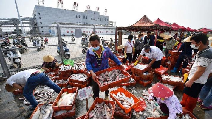ВОЗ попытается отыскать в Китае источник коронавируса
