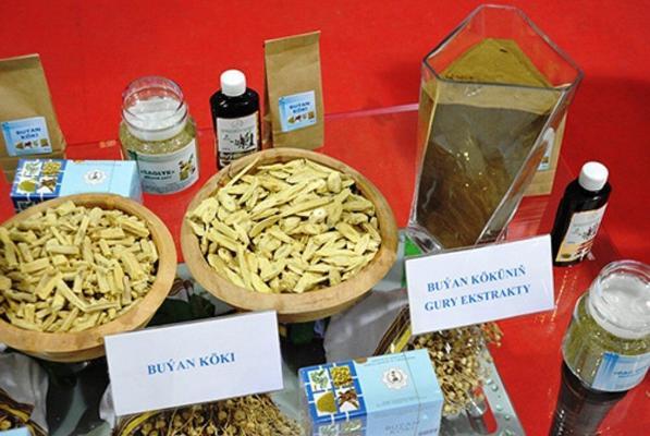 Экстракт солодкового корня способен нейтрализовать короновирус