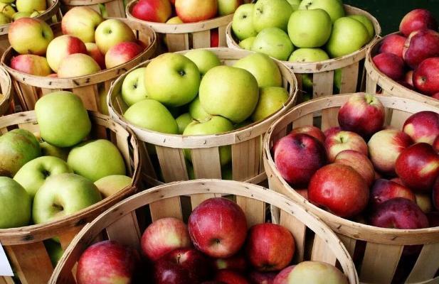 Ученые выяснили, что большинство людей едят яблоко неправильно