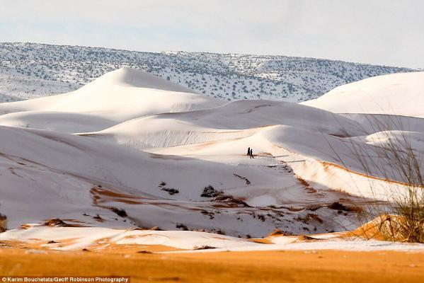 Sahara çölüne soňky 40 ýylda altynjy gezek gar ýagdy