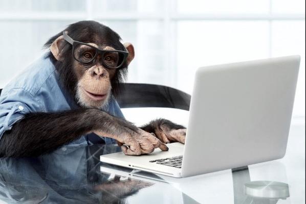 Neuralink вживил чип в мозг обезьяны и научил ее играть в видеоигры