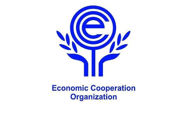 Председательство в Организации экономического сотрудничества в этом году примет Туркменистан