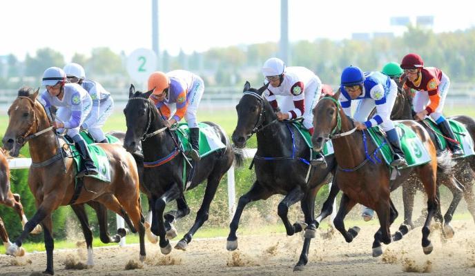 В Туркменистане создано акционерное общество для организации тотализатора на конных скачках