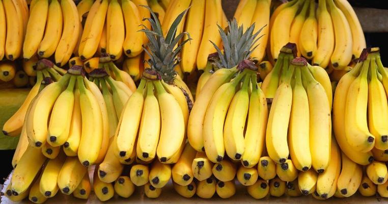 Ученые: Бананы могут исчезнуть из-за опасной болезни