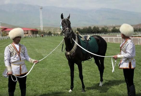 Türkmenistanyň Prezidenti ýurdumyzyň atşynaslaryna hormatly atlary dakdy