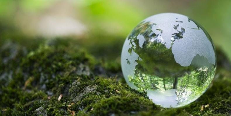 Генсек ООН объявил о начале Десятилетия по восстановлению экосистем