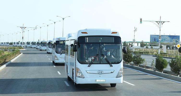 Aşgabadyň ýollarynda üç belgili awtobus gatnawlary hereket edip başlady