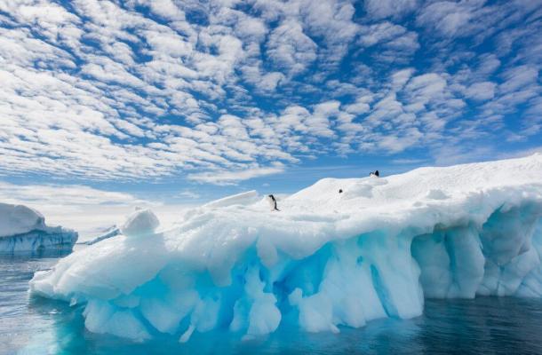 Antarktikada öňi alynmaly esasy 5 ýagdaý