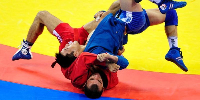 Самбо, кикбоксинг, муай-тай и еще три вида спорта могут войти в программу Олимпийских игр