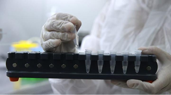 Власти Китая тестируют на коронавирус всех жителей Уханя для предотвращения повторной вспышки