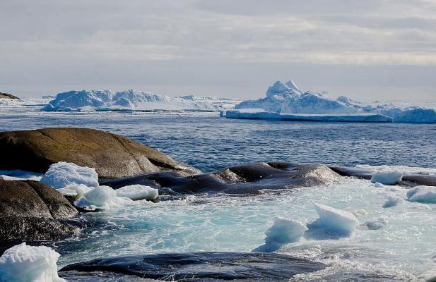Grenlandiýada iň demirgazyk ada ýüze çykaryldy