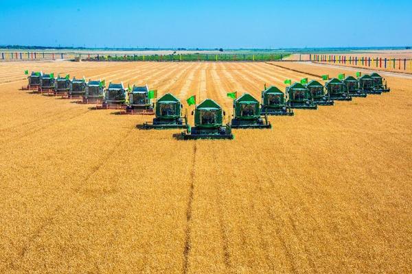 «Теперь наша страна не только производит много зерна, но и экспортирует его»